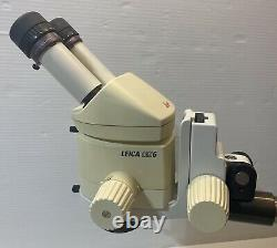 Leica MZ6 Stereo Microscope with 10x/21B Eyepieces, 1.5x Objective, WPI Boom Stand